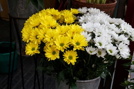 Beautiful yellow cut flowers sold on outdoor flower shop Imagens