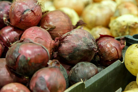 red onions: Fresh red onions