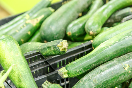 courgettes: Fresh healthy green zucchini courgettes cucumber