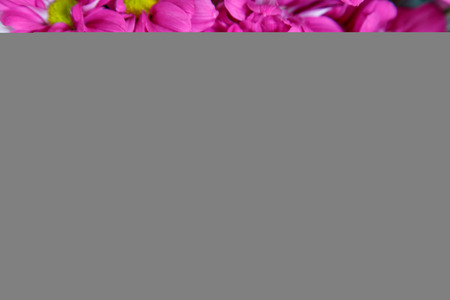 background, group bright cerise pink flowers