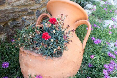 greek pot: Anfore di argilla greca con i fiori