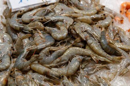 shellfish: raw shrimps on la boqueria market in Barcelona, Catalonia, Spain.