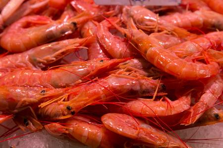 boqueria: raw shrimps on la boqueria market in Barcelona, Catalonia, Spain.