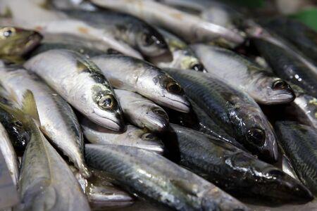 fish vendor: fresh fish on ice from marketplace Stock Photo