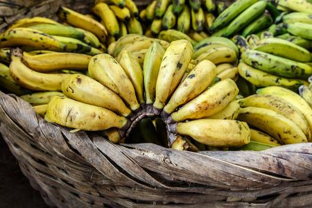 nicaraguan: bananas in basket from nicaraguan marketplace