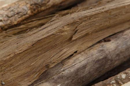 cracks: Cracks of wood closeup detail