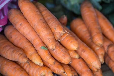 farm market: carrot group from farm market