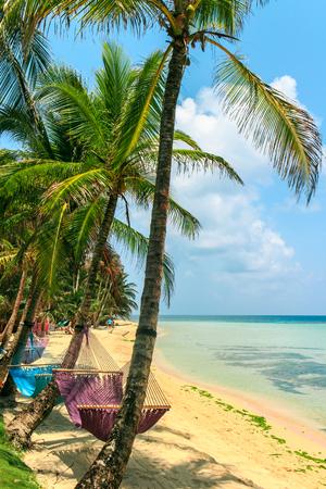 Playa tropical con hamaca en la palma, relajar concepto de Nicaragua Foto de archivo