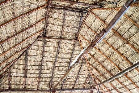 thatched: natural roofing from nicaragua as background