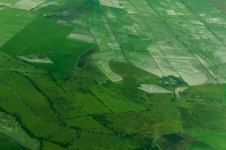 arable land: Freshly plowed and sowed farming land from above, neatly cultivated in non-urban agricultural area, textured effect and background. Food production industry, arable land concept.