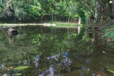 pinar: natural pool on river from Las Terrazas, Cuba Stock Photo