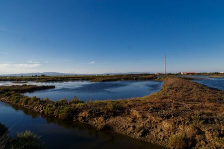 Delta de lEbre natural Park from Catalonia, river with plants view Stock Photo