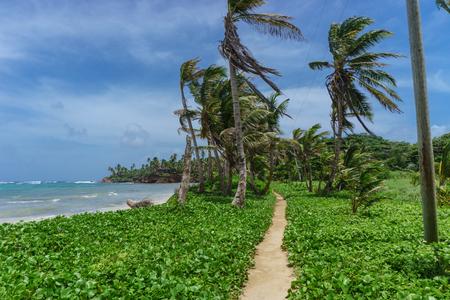 way on nature in Little Corn Island