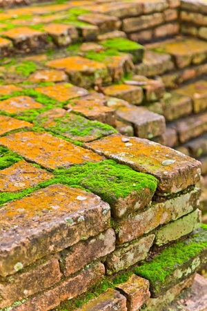 moss is growing on the ruins in Sukhothai Historic Park, Sukhothai province, Thailand