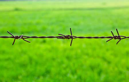 The closeup image of the old barbed wire photo