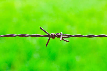 The closeup image of the barbed wire photo