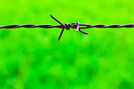 The closeup image of the old rusty barbed wire photo