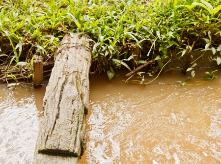 A log lays over the stream in the countryside of Thailand