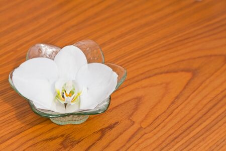 A white Phalaenopsis in a glass bowl on the wooden table