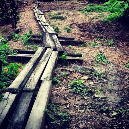 The weathered wooden path on the ground