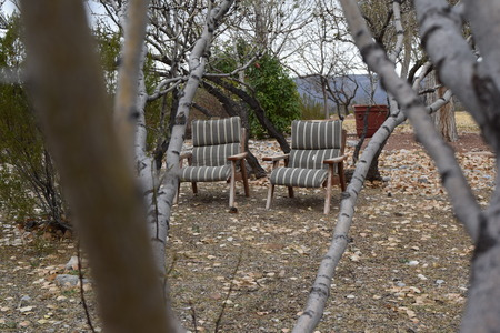 woodsy: a nice secluded area to sit and relax behind the house with a woodsy setting Stock Photo