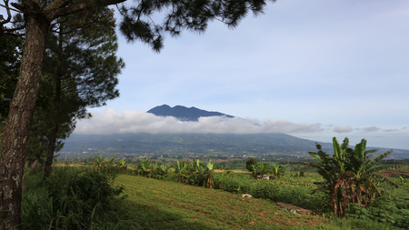 country side: Mount Salak view from country side
