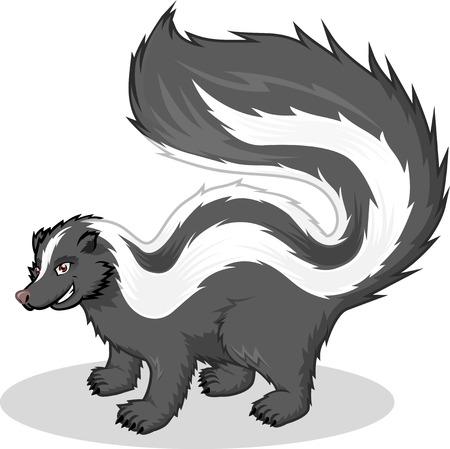 High Quality Skunk Vector Cartoon Illustration