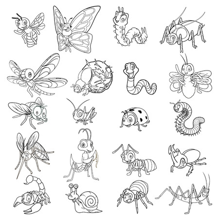 Set of Insect Cartoon Character Line Art Vector Illustration include ant, bee, beetle, butterfly, caterpillar, dragonfly, firefly, fly, grasshopper, ladybug, mantis, millipede, mosquito, scorpion, snail, spider, worm, stick insect, dung beetle Ilustração