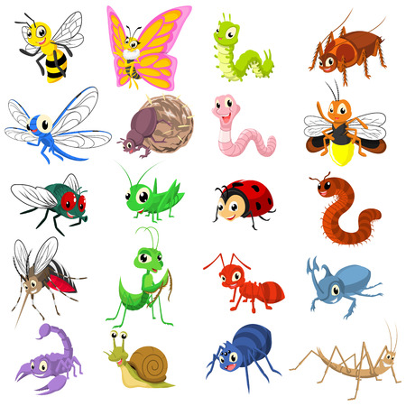 bugs: Set of Insect Cartoon Character Flat Design Vector Illustration include ant, bee, beetle, butterfly, caterpillar, dragonfly, firefly, fly, grasshopper, ladybug, mantis, millipede, mosquito, scorpion, snail, spider, worm, stick insect, dung beetle