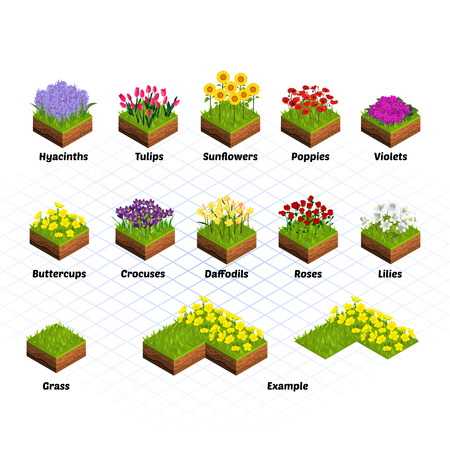 Set of Isometric Tiles Flowers Include Hyacinths, Tulips, Sunflowers, Poppies, Violets, Buttercups, Crocuses, Daffodils, Roses, Lilies, and Grass