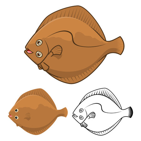 plaice: High Quality Flatfish Cartoon Character Include Flat Design and Line Art Version Vector Illustration