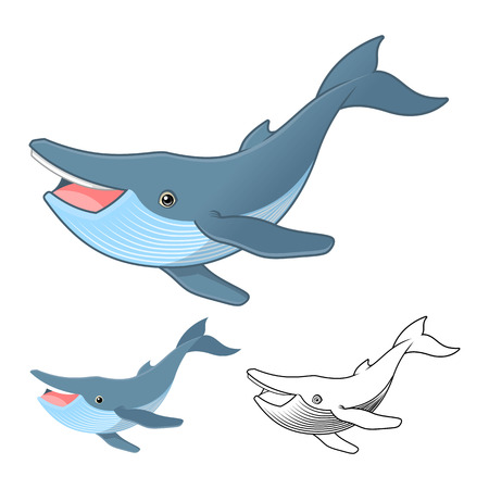 humpback: High Quality Humpback Whale Cartoon Character Include Flat Design and Line Art Version Vector Illustration Illustration
