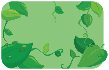 leaf summer vector illustration