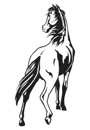 thoroughbred horse: caballo Vectores