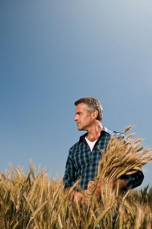 jornada de trabajo: Agricultor maduro mirando con satisfacci�n en su campo cultivado con un mont�n de trigo maduro despu�s de un d�a de trabajo
