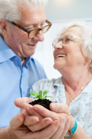 Alte ausgemustert Couple holding von einer frischen Pflanze in ihren Händen, Symbol der Bank gute Investitionen für den Ruhestand