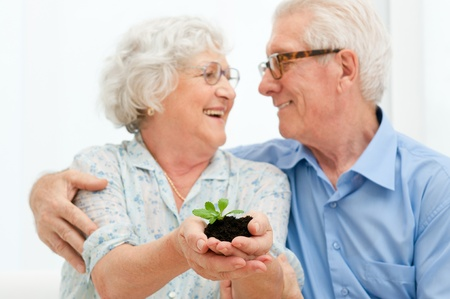 Elder smiling loving couple holding fresh green sprout, symbol of good bank investments for the retirement photo