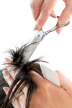 hair cutting: Hairdresser cutting long hair isolated on white background, scissors detail. Stock Photo
