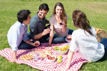 pic nic: Group Of Happy Young Friends On Vacation Enjoying Wine At Picnic Stock Photo