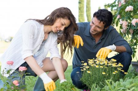 hombres trabajando: Retrato de la feliz pareja joven que toma cuidado de las plantas al aire libre en su jard�n