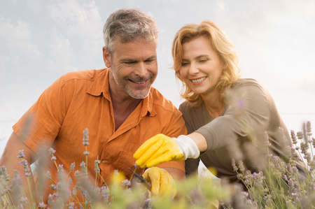 handglove: Portrait Of Happy Mature Couple Gardening Together In The Field