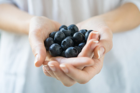 Closeup shot of a woman holding fresh blueberries. Closeup of a girls hands holding a handful of black raspberry fruit. Shallow depth of field with focus on blueberry fruit.