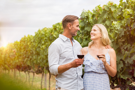 Senior couple drinking red wine in grape vineyard. Romantic mature couple looking each other and toasting with wine glasses at vineyard. Happy man and smiling woman drinking wine in field.