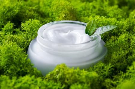 Schließen Sie oben von der Gesichtsfeuchtigkeitscreme mitten in dem grünen Moos. Detail des Glasgefäßes Bio Feuchtigkeitscreme mit kleinen Blättern auf Moos. Bio-Lotion für die Hautpflege. Naturschönheits- und Hautpflegekonzept.