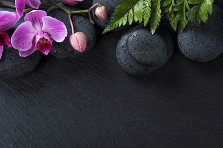 Fleurs d'orchidée roses et pierres de basalte sur fond noir. Vue de dessus des fleurs d'orchidées avec des feuilles de fougère sur un caillou humide. Vue d'angle élevé de belle orchidée fleurissant avec des gouttes d'eau et des pierres de spa avec espace copie.