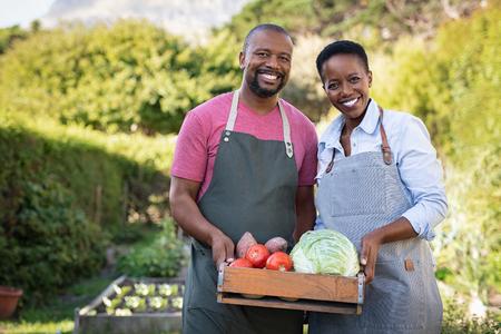 Retrato de la feliz pareja de agricultores negros sosteniendo una caja de verduras bio en la granja. Sonriente hombre africano y mujer madura mostrando caja de verduras y mirando a cámara. Agricultores satisfechos sosteniendo una canasta de verduras cosechadas.