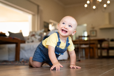 Crawling baby boy at home on floor. Excited little boy in dungaree crawling on wooden floor looking up. Happy toddler walking on hand and legs.