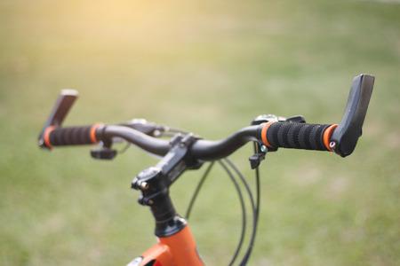 Young Baby Giraffe Sitting Bicycle Handlebar Bike Bell