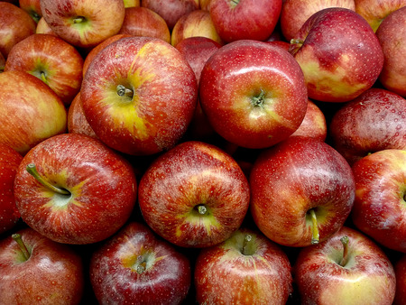 Red Washington Apple Background 写真素材