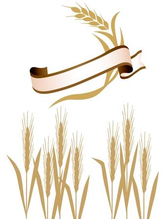 小麦のリボン  イラスト・ベクター素材